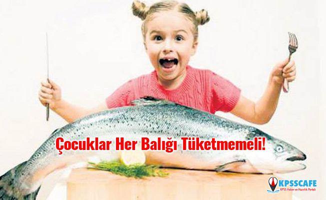 Çocuklar Her Balığı Tüketmemeli!
