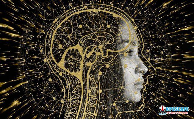 Yakın Gelecekte Beynimizi Bilgisayara Bağlayabiliriz