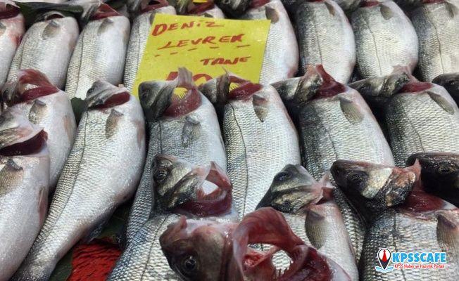 Balıkta inanılmaz hile: Solungaçlarını kırmızıya boyuyorlar