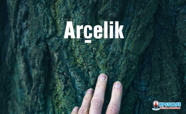 Arçelik 6'ncı kez Borsa İstanbul Sürdürülebilirlik Endeksi'nde Yer Aldı