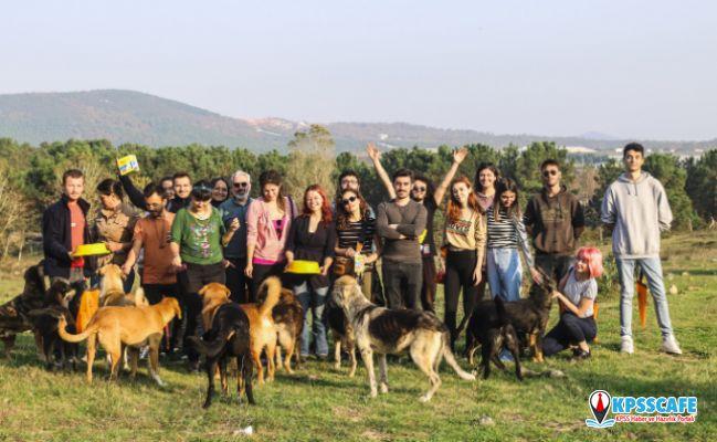 Sürgün Köpeklerin Sesi Olmak İçin Bir Kez Daha Bir Araya Geldiler!