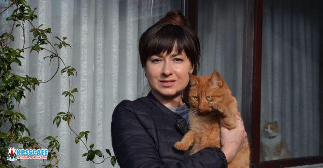 Rus kadının kedilerini ciğerle zehirlediler!