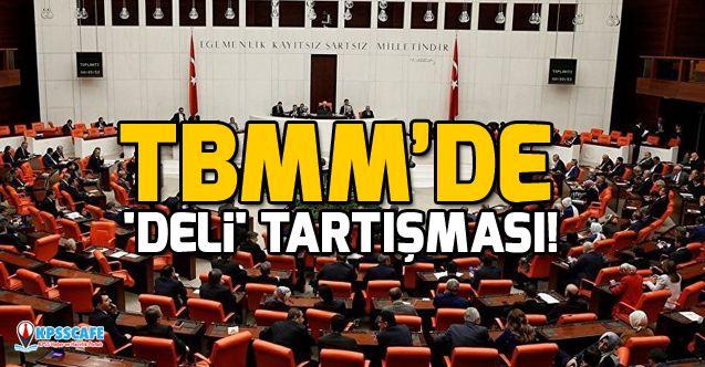 TBMM Genel Kurulu'nda 'deli' tartışması!