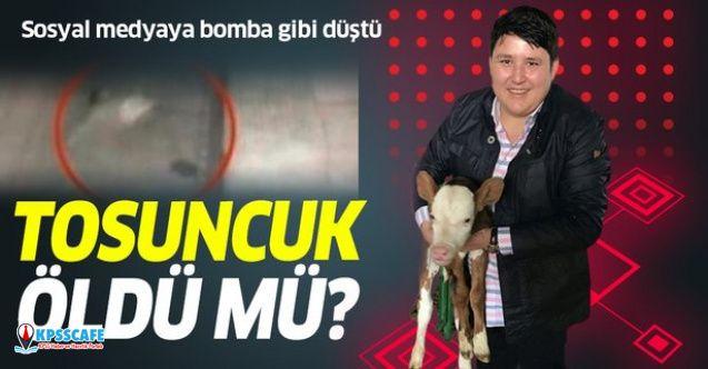 """""""Çiftlik Bank Tosuncuk Mehmet Aydın 27. Kattan Atlayarak İntihar Etti"""" İddiası"""