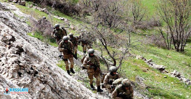 Bitlis ve Siirt'te 'Kıran-8 Sehi Ormanları Operasyonu'