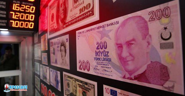 TL'nin dolar karşısındaki aylık değer kaybı yüzde 4'ü aştı!