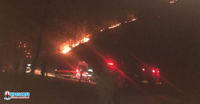 Trabzon ile Giresun'da orman yangınları!