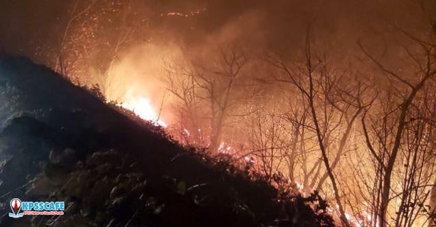 Karadeniz'in ciğerleri yanıyor ! Yangınları o terör örgütü üstlendi!
