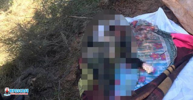İstanbul'da ormanda vahşet! Battaniyeye sarılı kadın cesedi bulundu