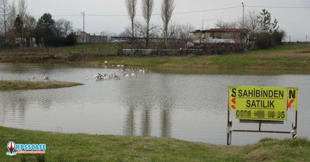 Başakşehir'de 2 milyona sahibinden satılık göl!