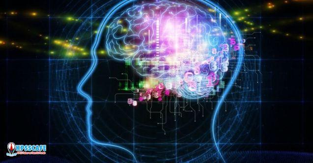 Beyin yaşlanmamasının sırrı çözüldü!