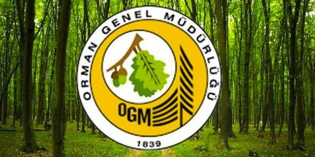 OGM KPSS Şartsız 64 Şehre Personel Alımı Yapıyor!