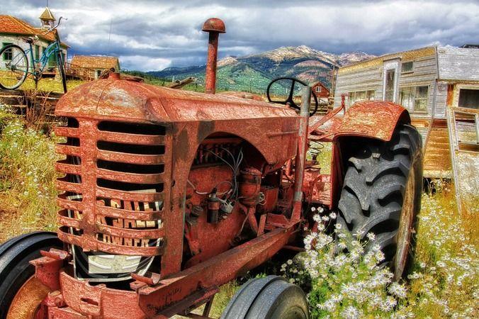 Tarım Ve Orman Bakanlığı 2083 İşçi Alımı İçin İlan Yayımladı! İşte Başvuru Şartları