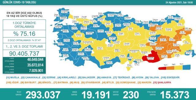 Salgında Tehlikeli Seyir! 24 Ağustos Koronavirüs Tablosu
