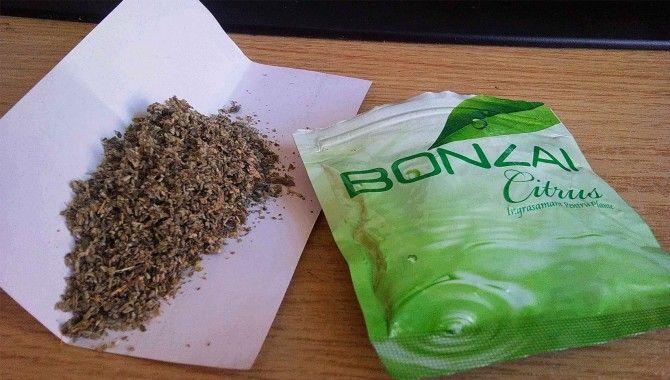 Bonzai'de molekül değişimi taktiği!