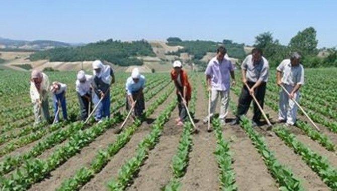 Çiftçilere 'ballı' eğitim