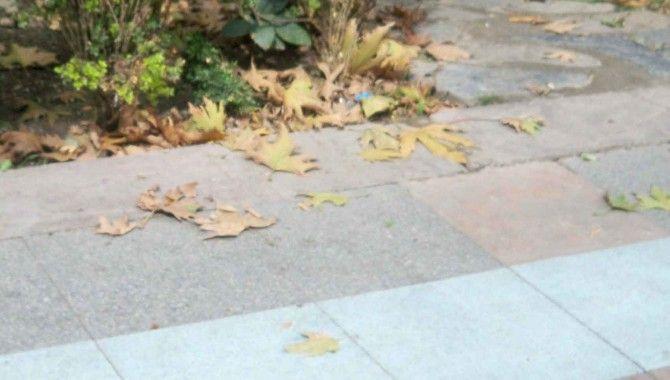 Sonbahar'ın aynası Yürüyüş Yolu