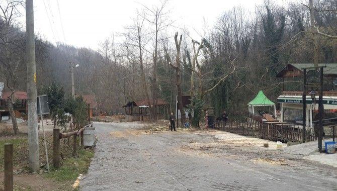 Kartepe Belediyesi'den Alabalık Vadisi'ne kış bakımı