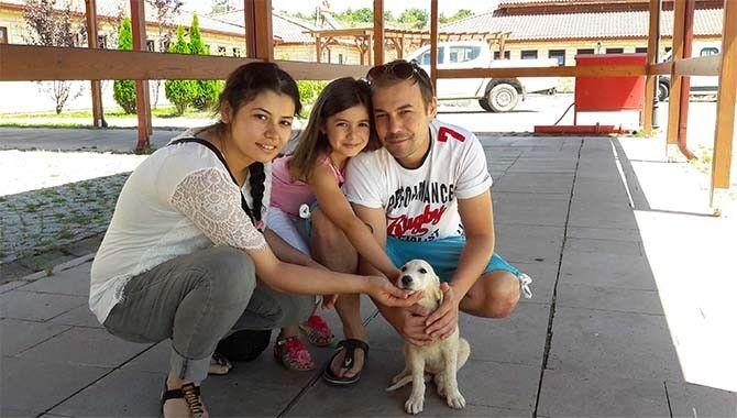 Sokak Hayvanları Bakım Evi Bayramda da ziyarete açık olacak