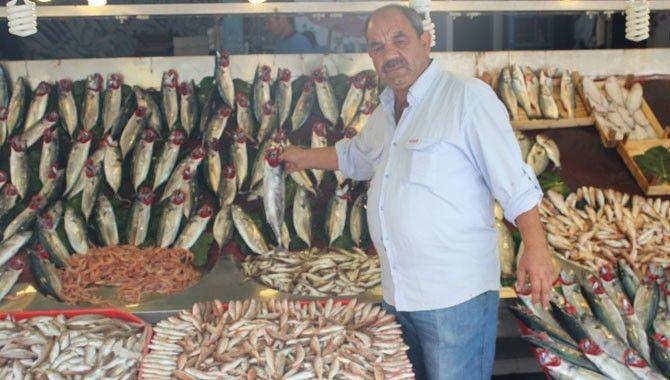 Balık pazarındaki bolluk fiyatlara yansıdı