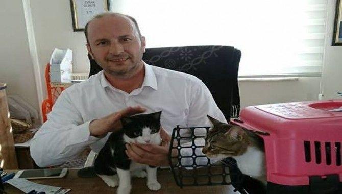 Muhtar Yoldaş ve kedileri…