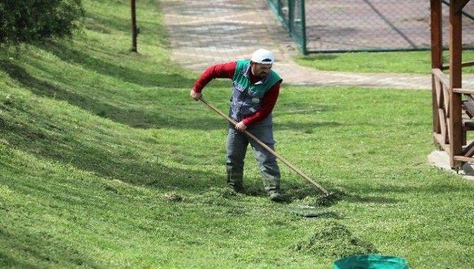 Başiskele'de yeşil alan çalışmaları sürüyor