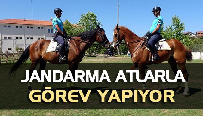 Jandarma atlarla görev yapıyor