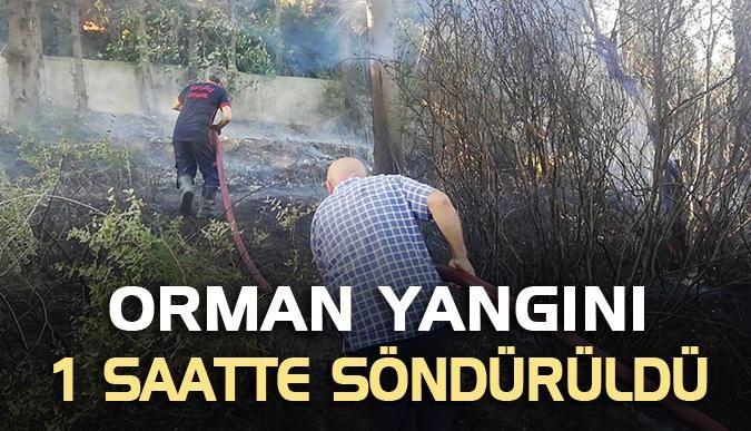 Orman yangını 1 saatte söndürüldü