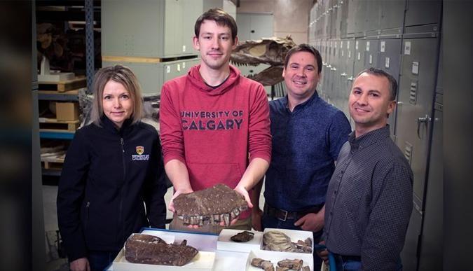 11 milyon yıllık 'ölüm meleği' fosili bulundu