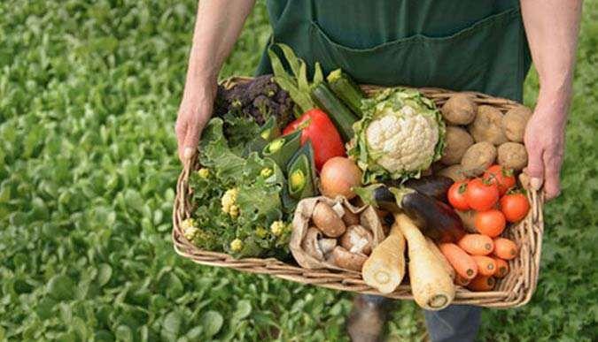 Organik tarıma mücbir sebep düzenlemesi