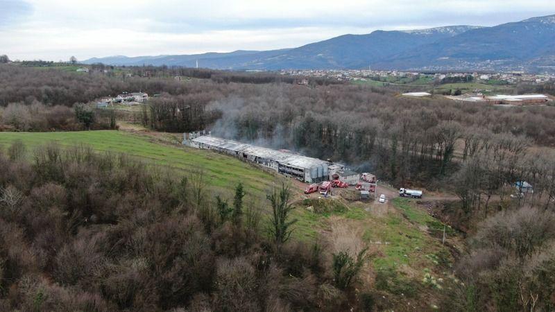 İbriktepe'de tavuk çiftliğine büyük tepki