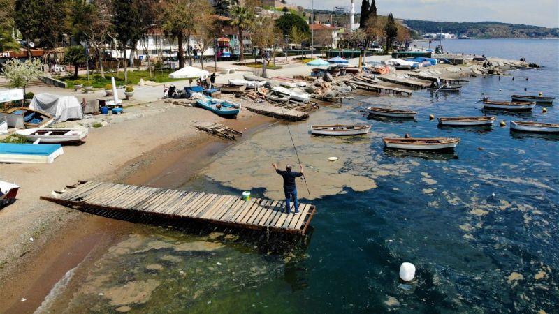 Deniz yüzeyini kaplayan tabaka balıkçılara darbe vurdu