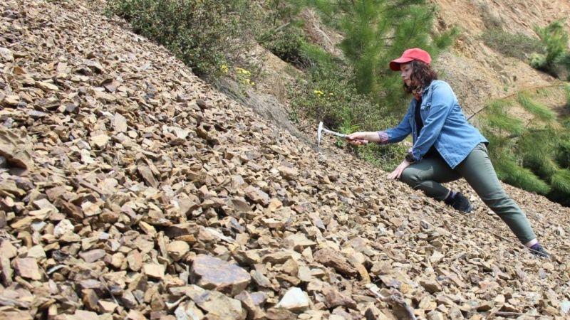 400 milyon yıllık fosiller heyecan uyandırıyor
