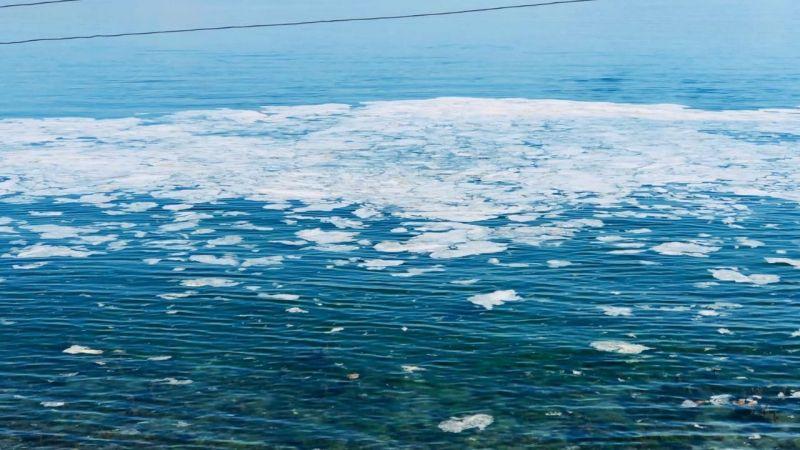 Deniz Salyası Karamürsel'e de sıçradı