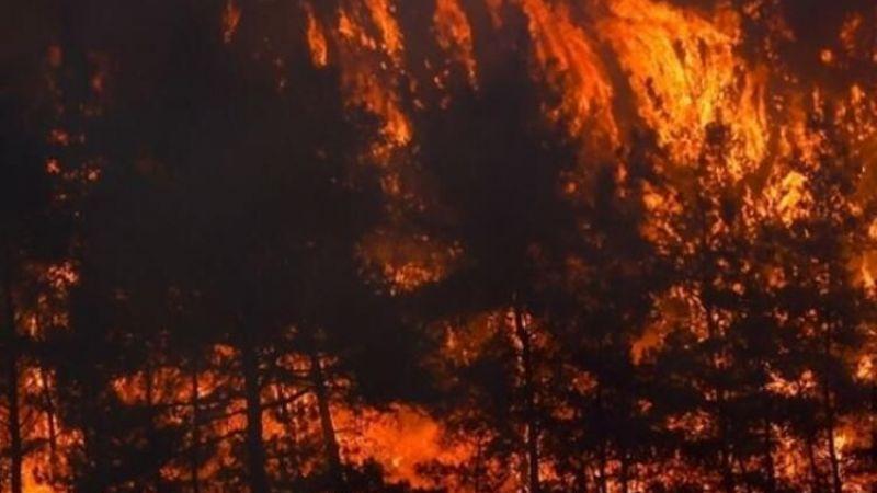 Yangınlar aynı anda nasıl başladı?