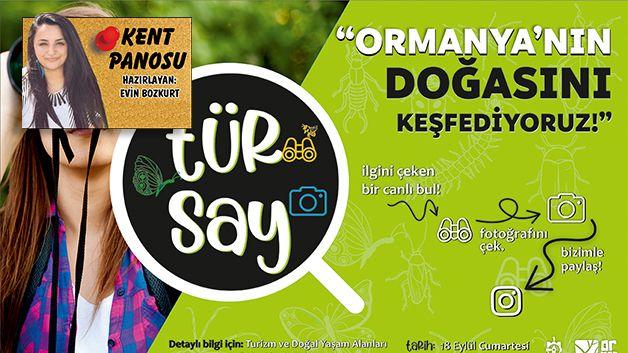 İlk TÜR SAY etkinliği yarın Ormanya'da