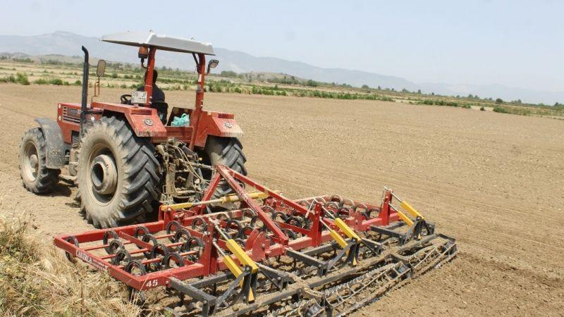 Söke Ovası'nda pamuk ekimi tamamlandı