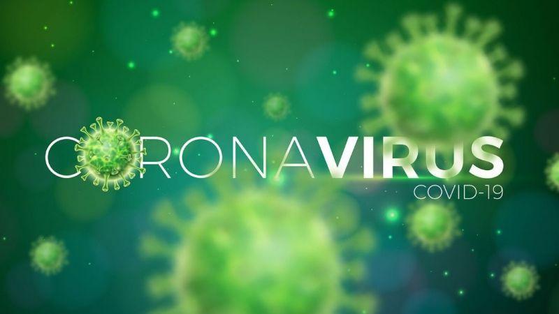 Koronavirüs mücadelesinde Türkiye'ye büyük övgü
