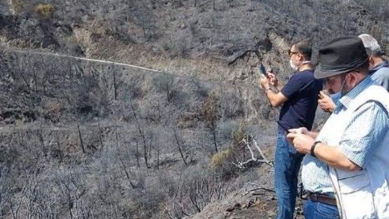 Savuca Mahallesi'nde  500 dekar meyve bahçesi yandı