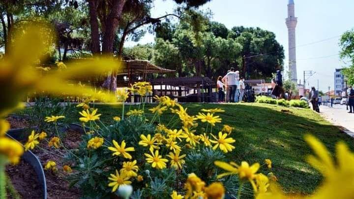 Panayır Pazarının çevresi yeşillendirildi.