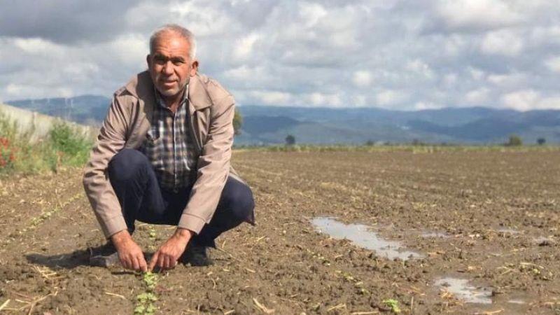 Söke Ovası'nın üçte birinde ekim tamamlandı