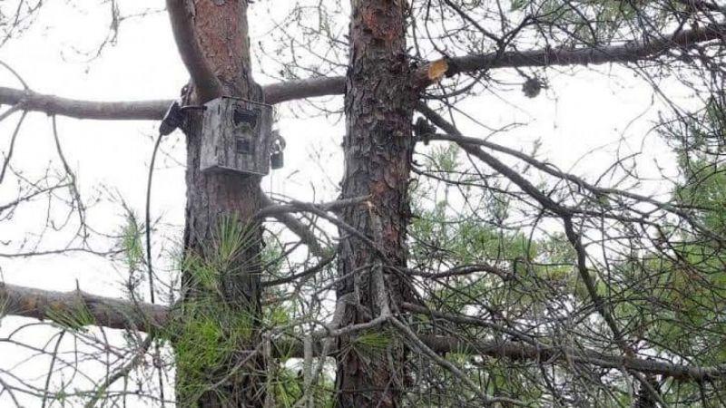 Milli Parklar Müdürlüğü önlemlerini aldı