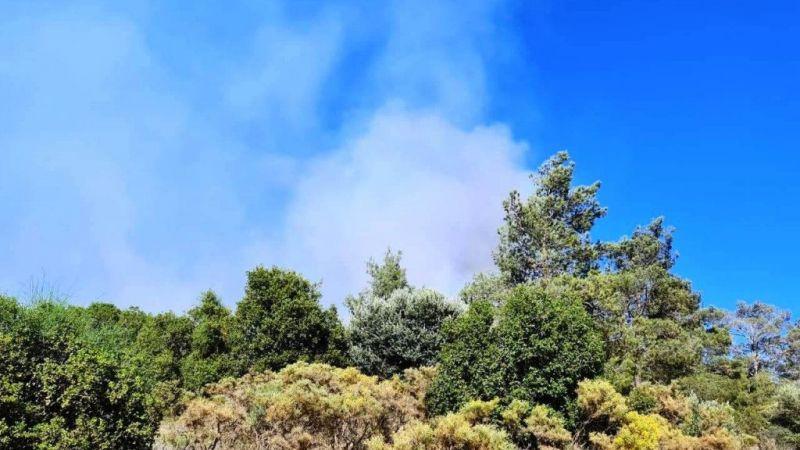 Yangında 4 hektar ormanlık alan zarar gördü