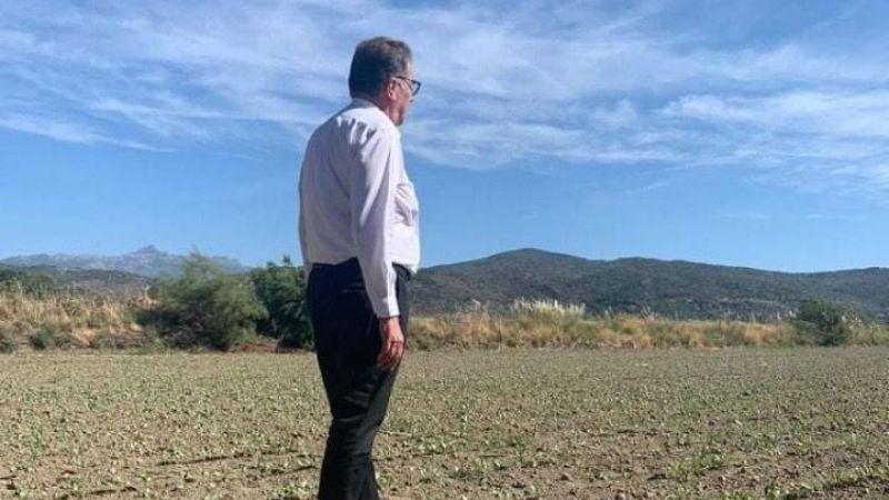 Söke Ovası'na 280 bin dekar pamuk ekildi