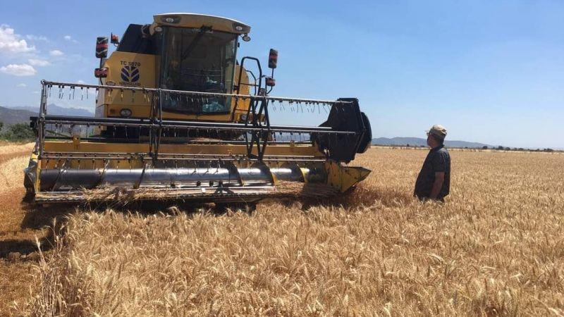 Buğday hasadında sona gelindi