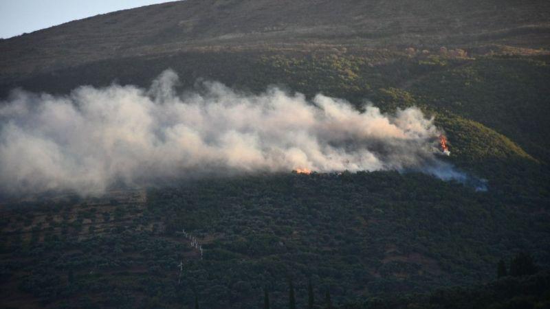 Söke'deki orman yangını korkuttu