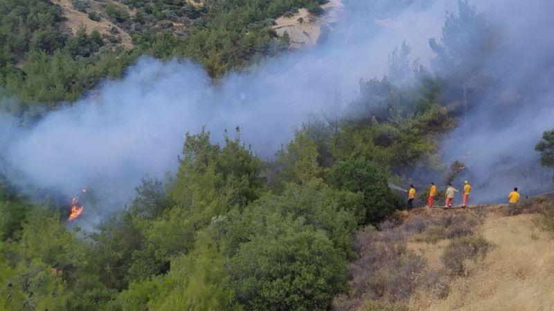 Efeler'de çıkan yangın, rüzgarın şiddeti ile büyüdü