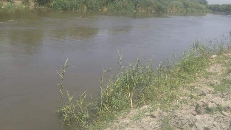 Söke Ovası'nda geçici su bolluğu yaşanıyor