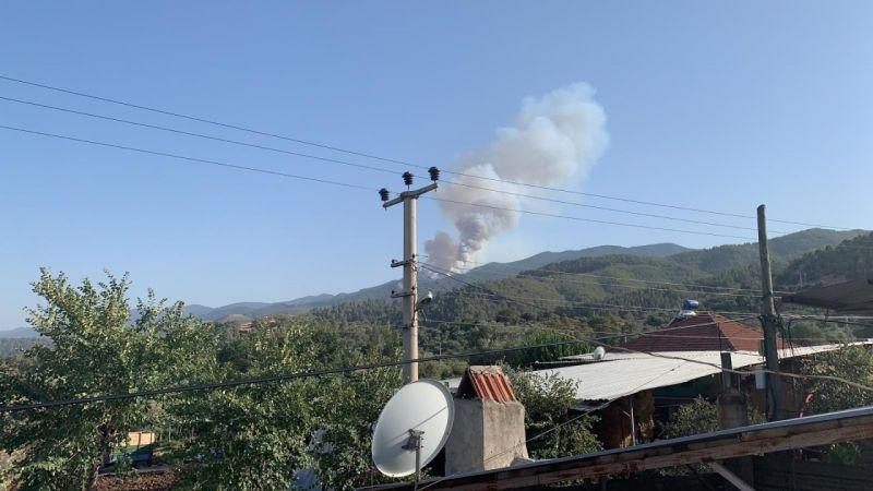 Karacasu'da orman yangını