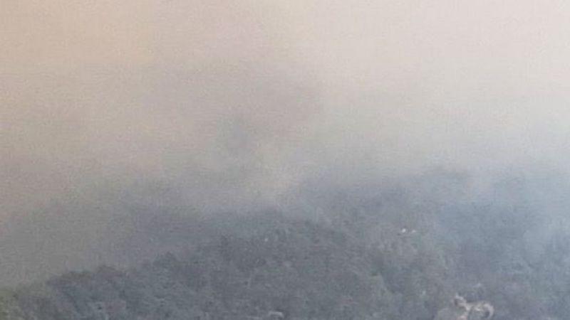 Aydın Çine'de yangın